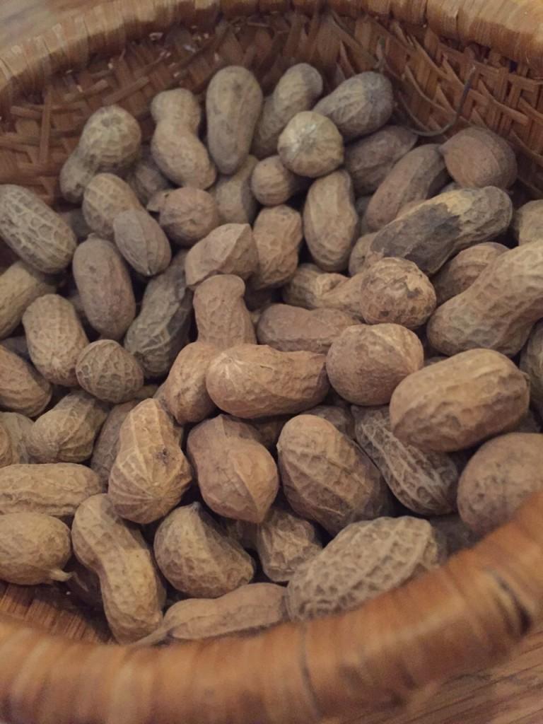 小粒なピーナッツ