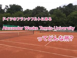 Alexander Waske Tennis-University