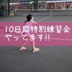 【イベント】インター校向け、10日間特別練習会をやってます!!