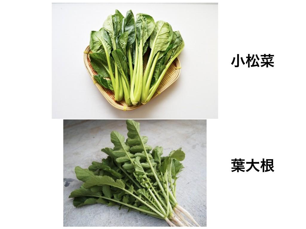 小松菜、葉大根.001