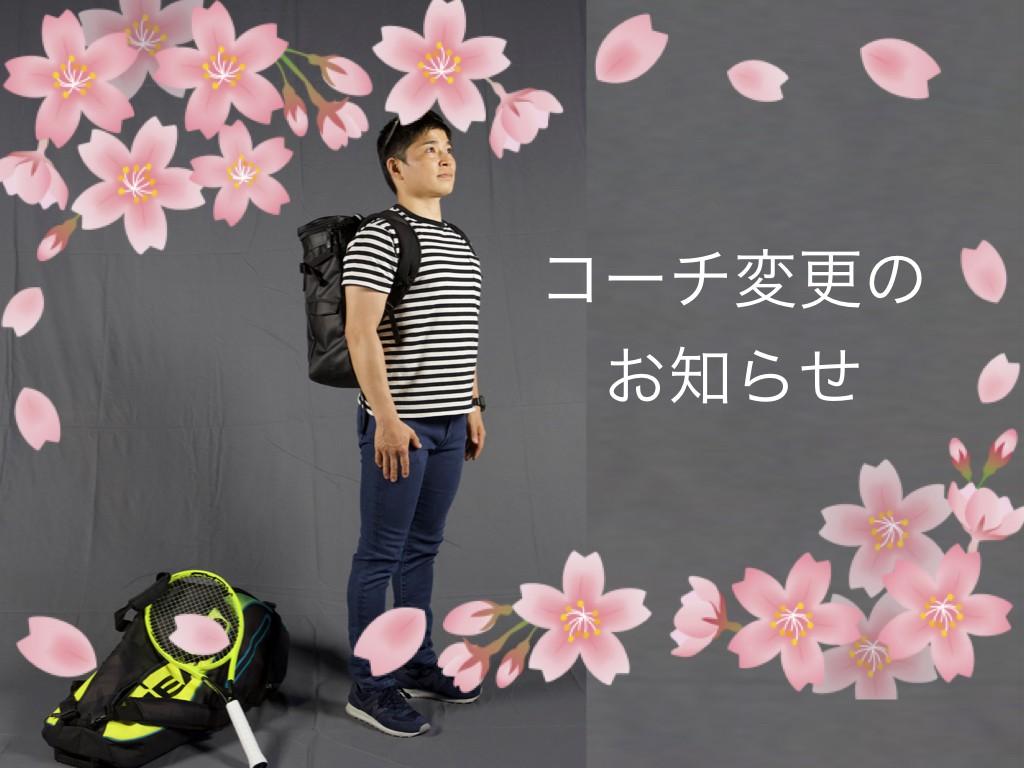 ブログ表紙 桜.001